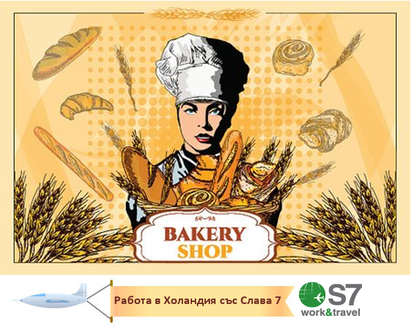 Работа в Холандия/ Позиция: Жена за работа в пекарна